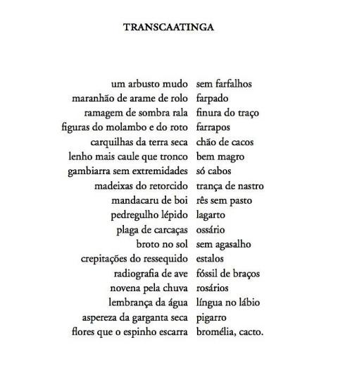 transcaatinga
